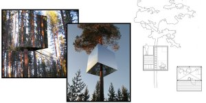 Now you see it.....the invisible tree house.